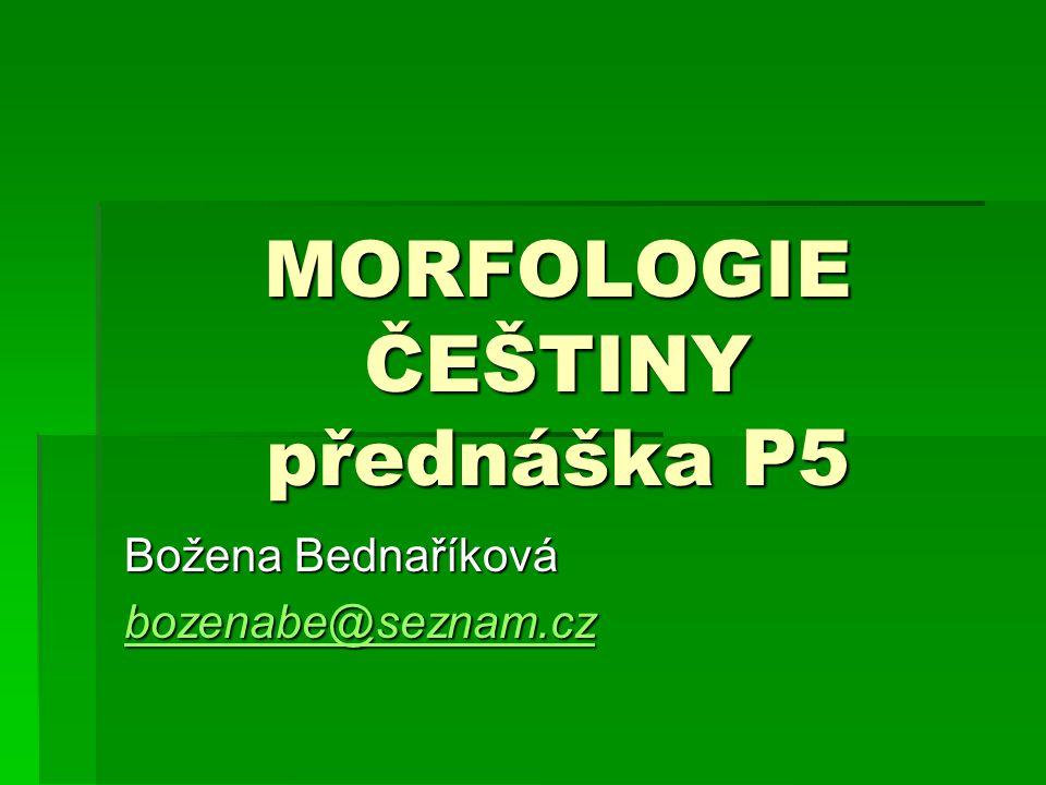 MORFOLOGIE ČEŠTINY přednáška P5
