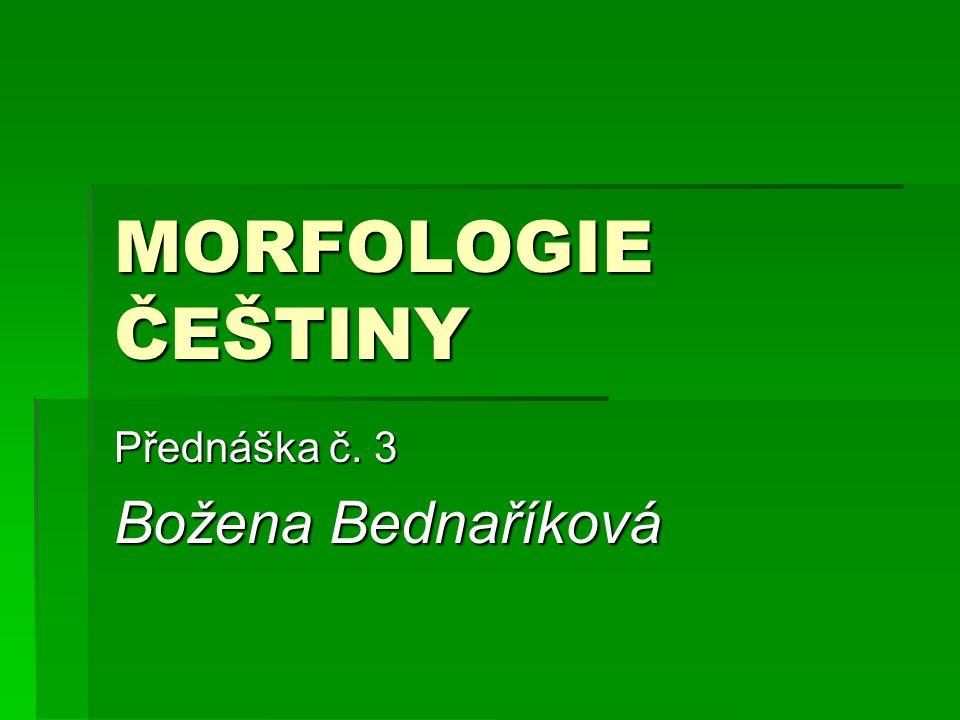 Přednáška č. 3 Božena Bednaříková