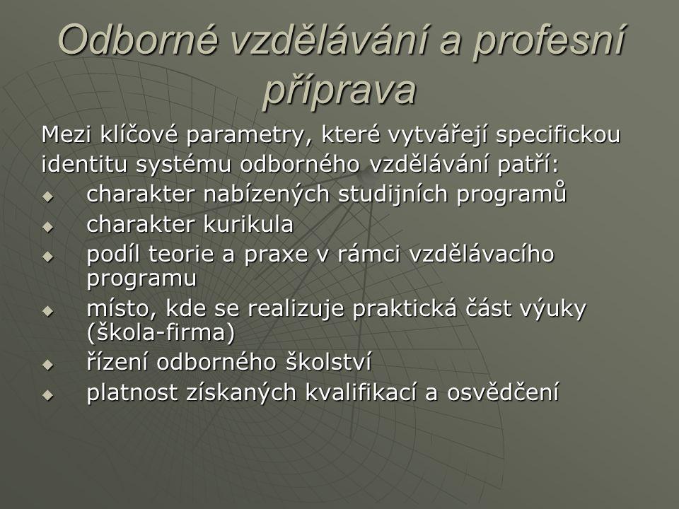 Odborné vzdělávání a profesní příprava