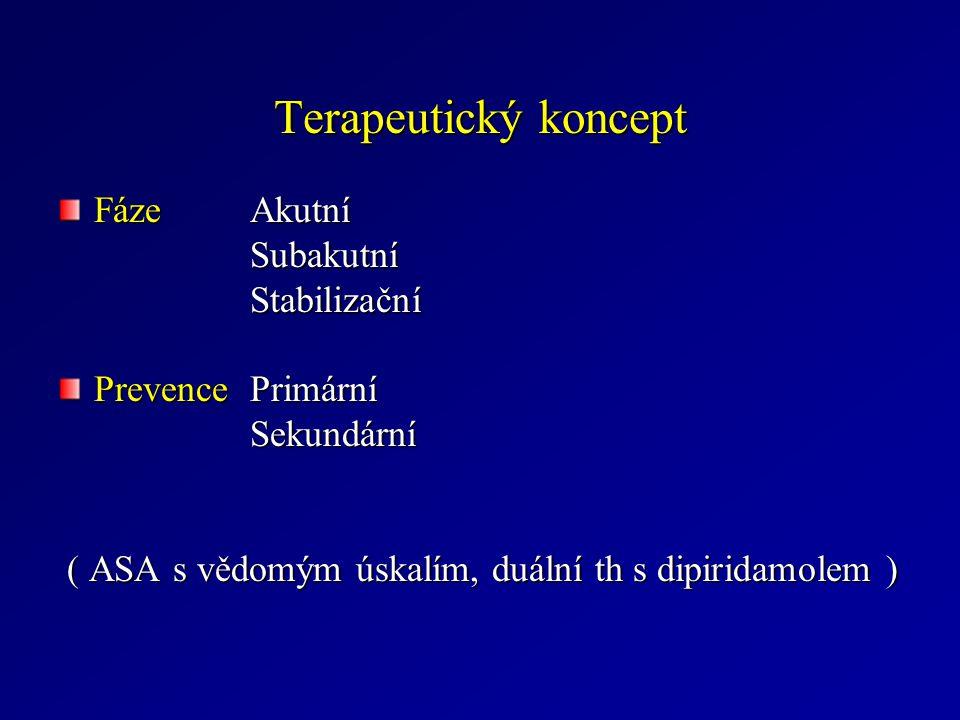 Terapeutický koncept Fáze Akutní Subakutní Stabilizační