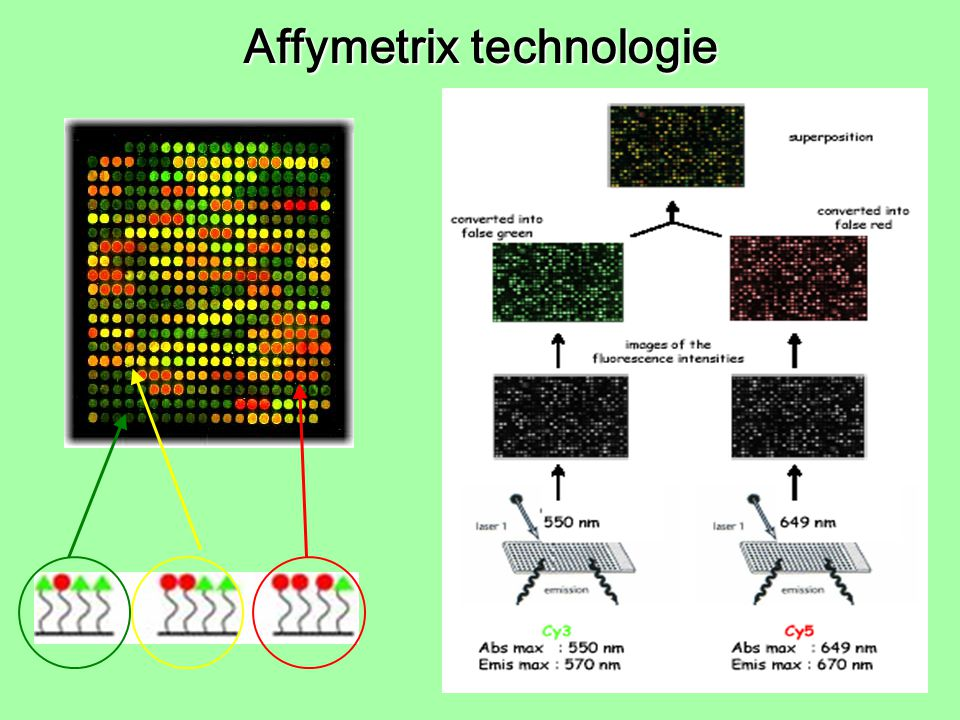 Affymetrix technologie