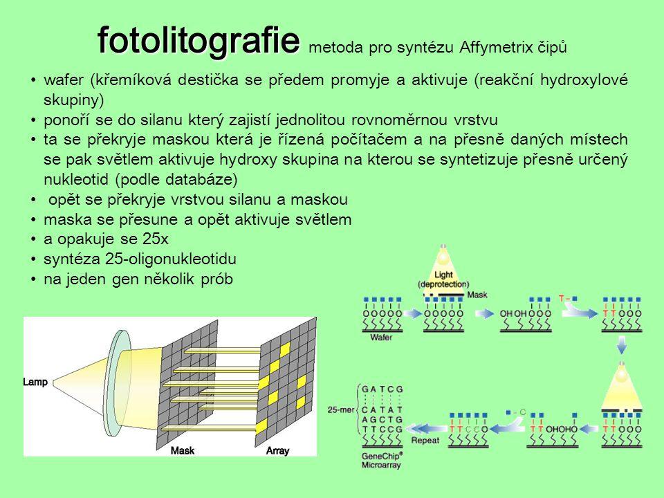 fotolitografie metoda pro syntézu Affymetrix čipů
