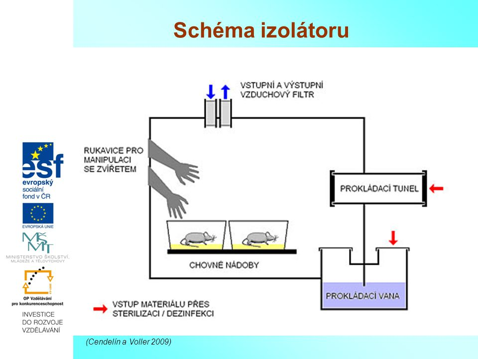 Schéma izolátoru (Cendelín a Voller 2009)