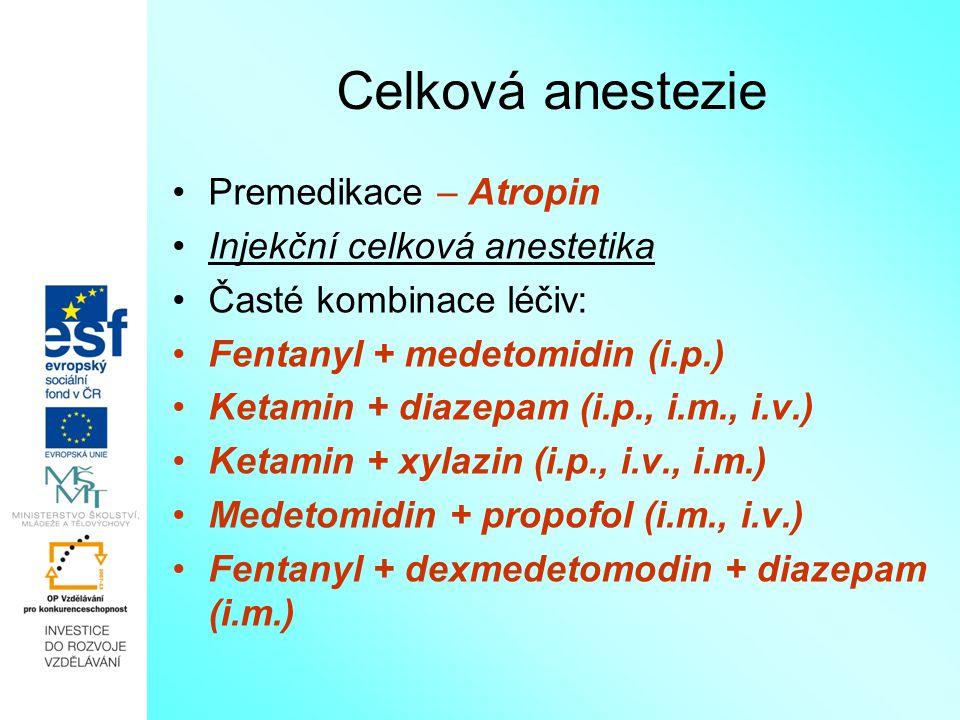 Celková anestezie Premedikace – Atropin Injekční celková anestetika