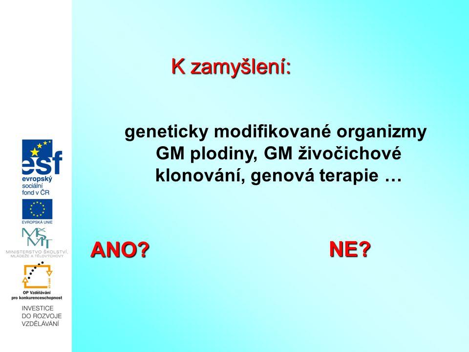 K zamyšlení: ANO NE geneticky modifikované organizmy