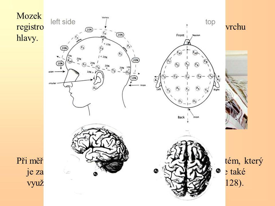 Mozek při své činnosti tvoří elektrické proudy