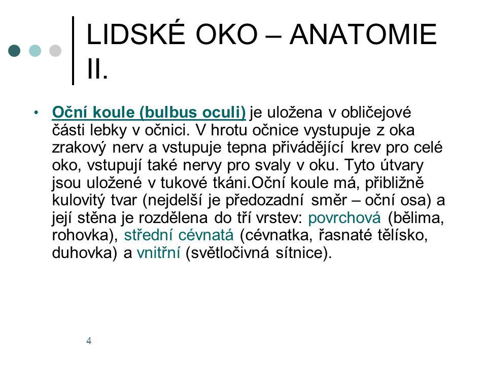 LIDSKÉ OKO – ANATOMIE II.