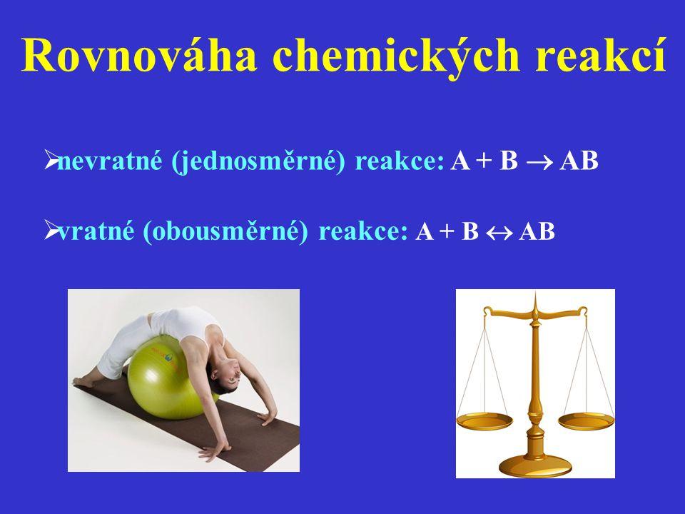 Rovnováha chemických reakcí