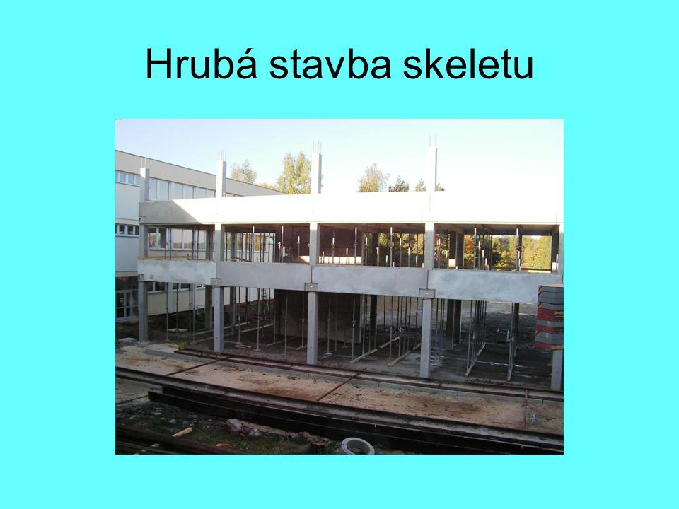 Hrubá stavba skeletu