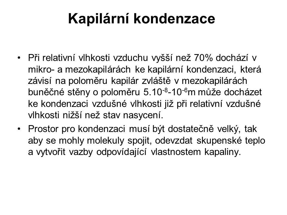 Kapilární kondenzace