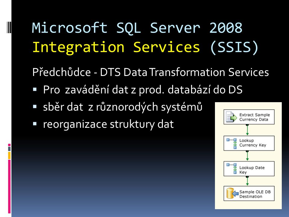 Microsoft SQL Server 2008 Integration Services (SSIS)