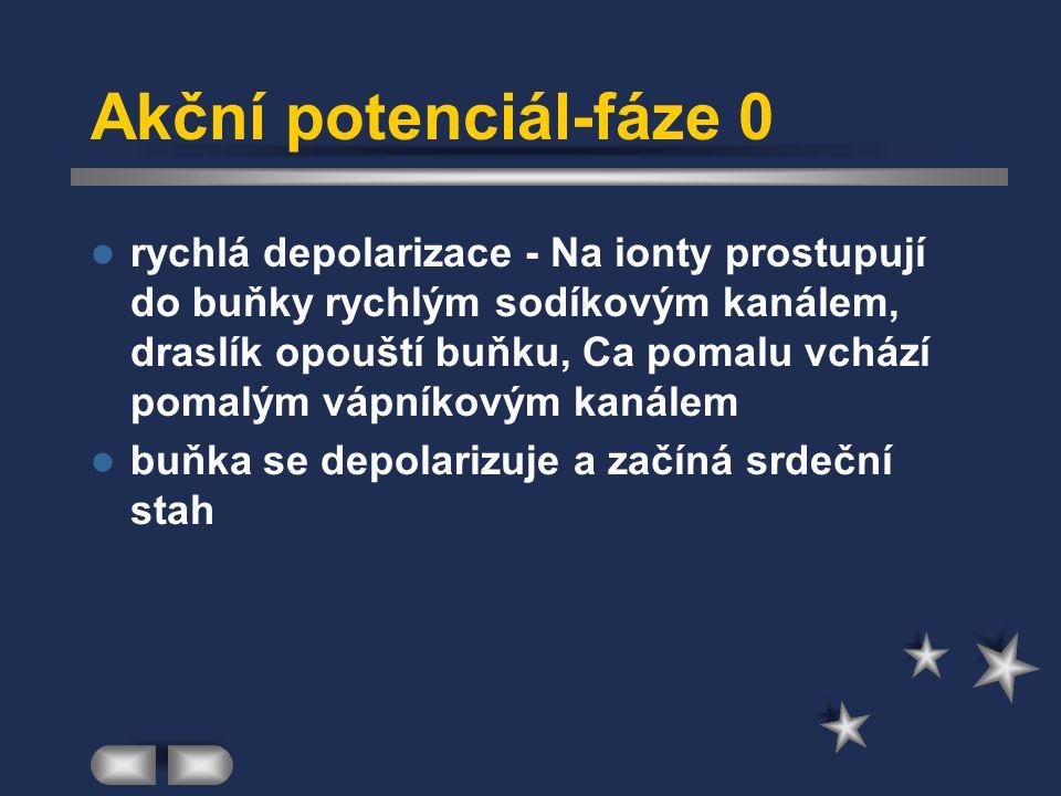 Akční potenciál-fáze 0