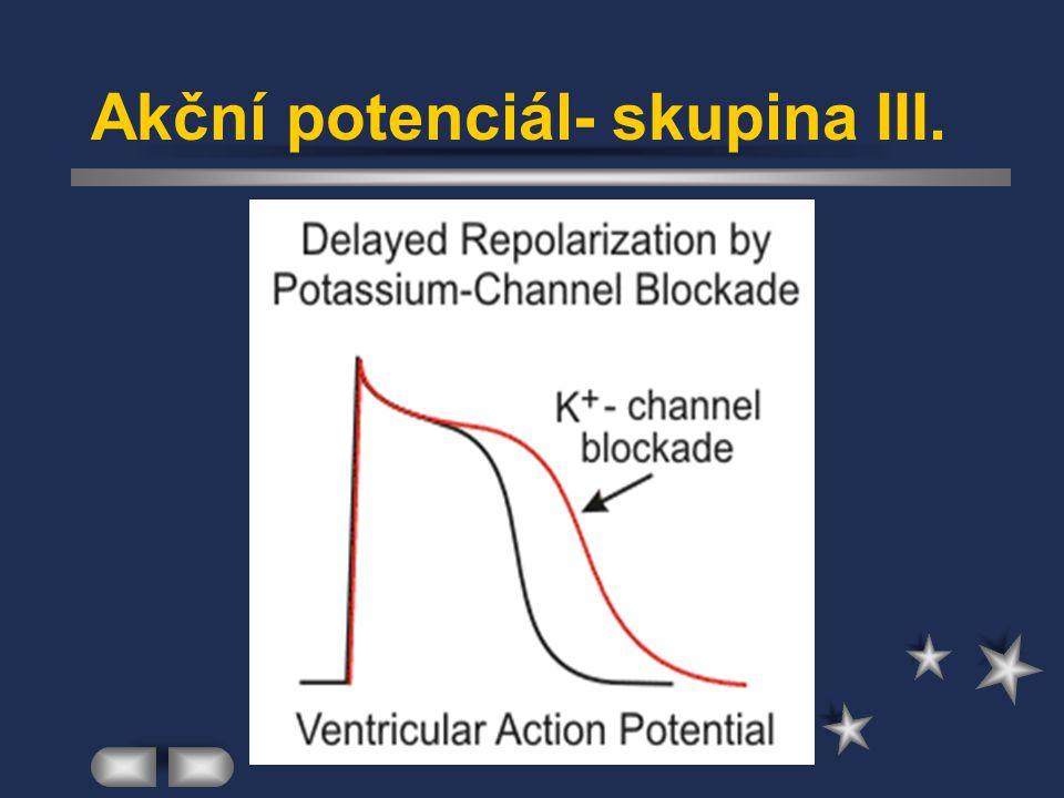 Akční potenciál- skupina III.