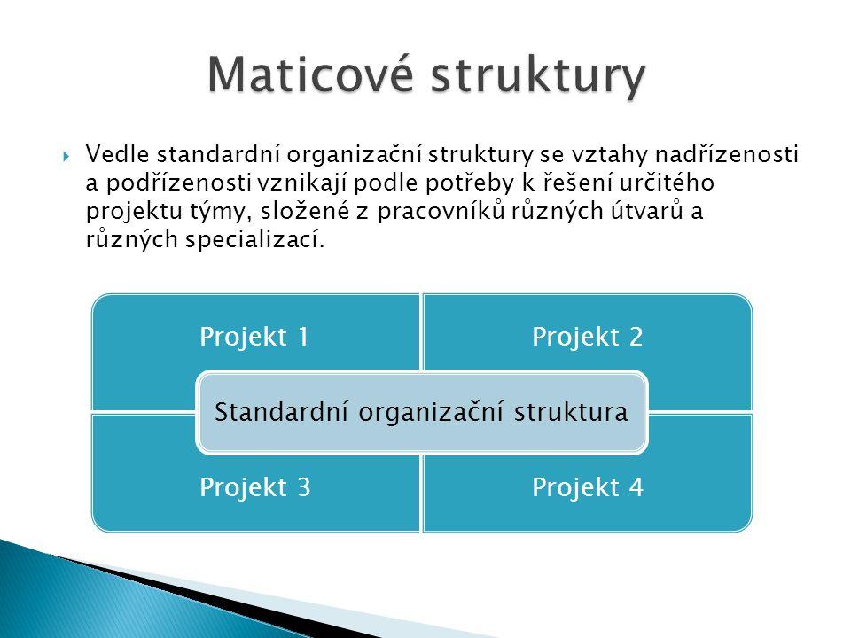 Standardní organizační struktura