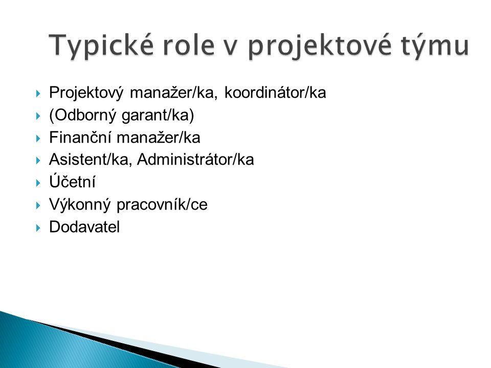Typické role v projektové týmu