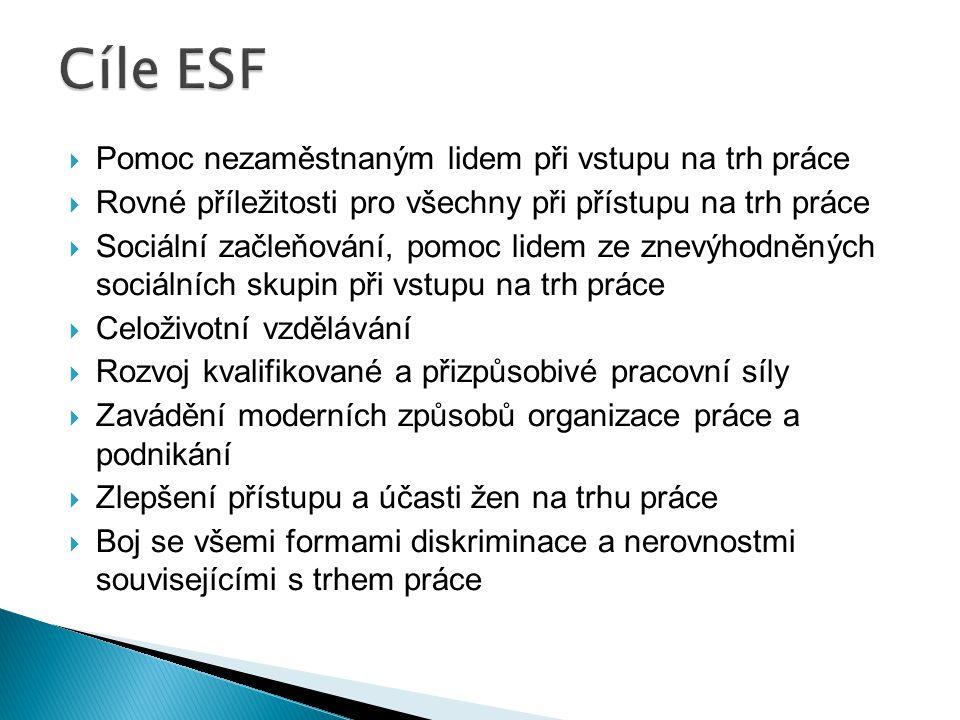 Cíle ESF Pomoc nezaměstnaným lidem při vstupu na trh práce