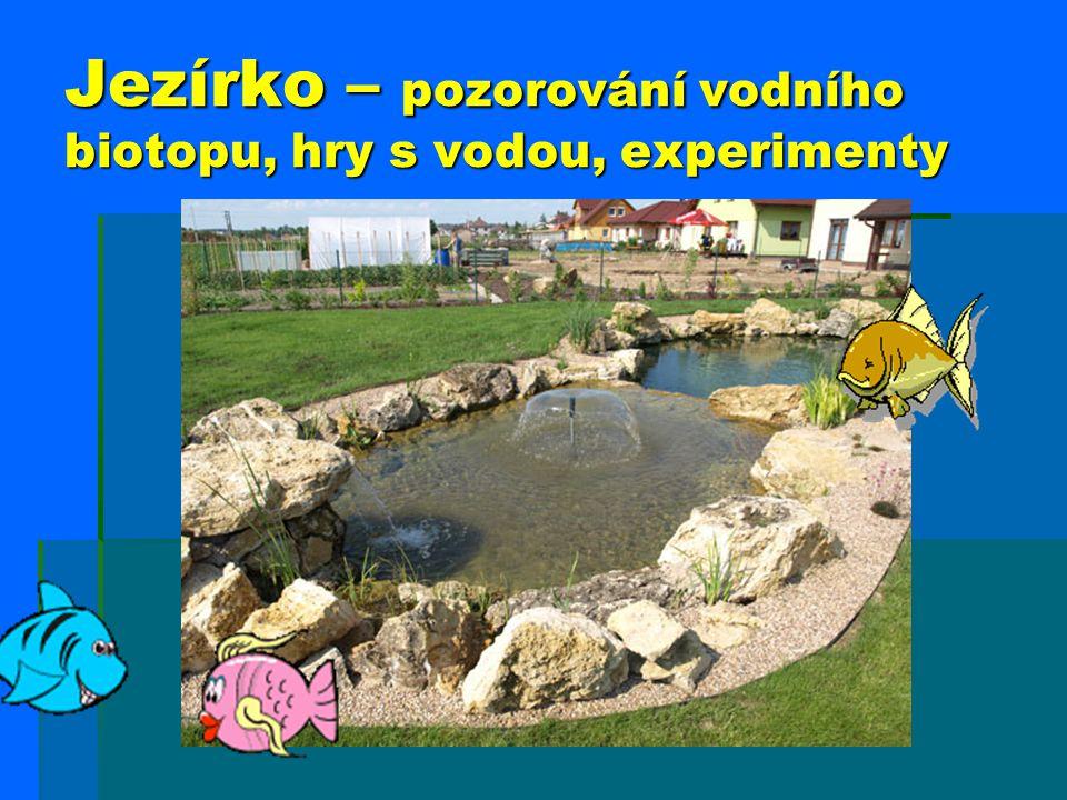 Jezírko – pozorování vodního biotopu, hry s vodou, experimenty