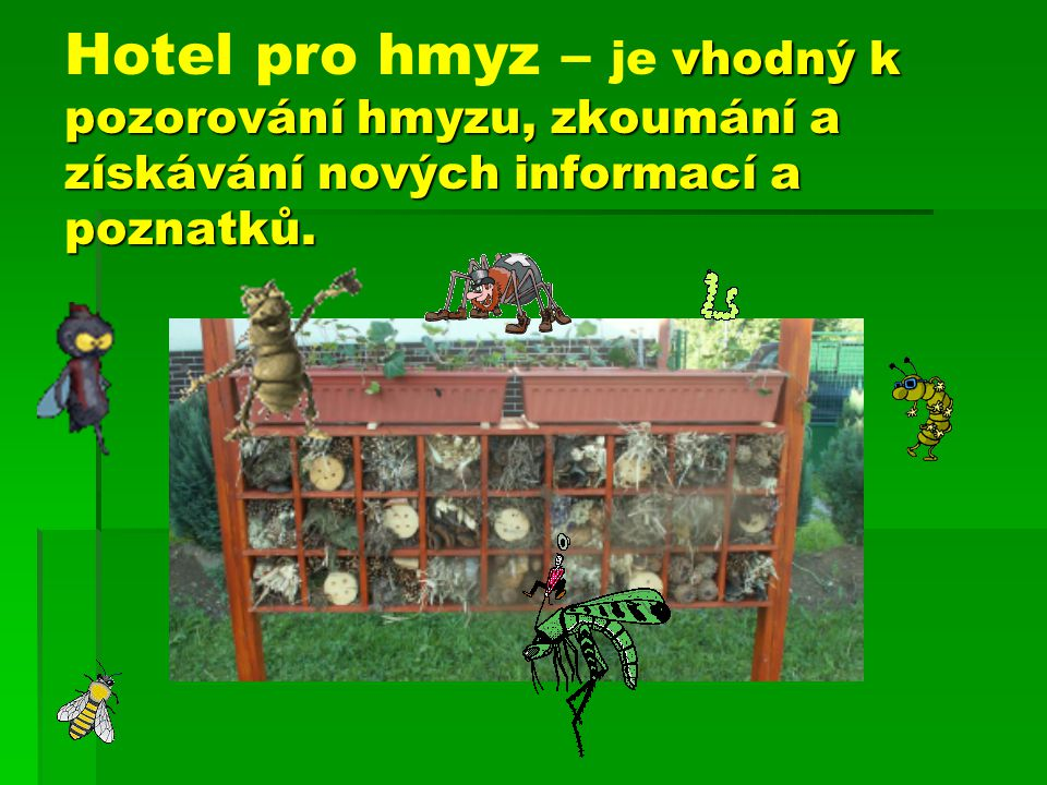 Hotel pro hmyz – je vhodný k pozorování hmyzu, zkoumání a získávání nových informací a poznatků.