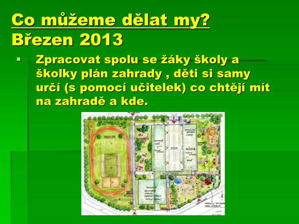 Co můžeme dělat my Březen 2013