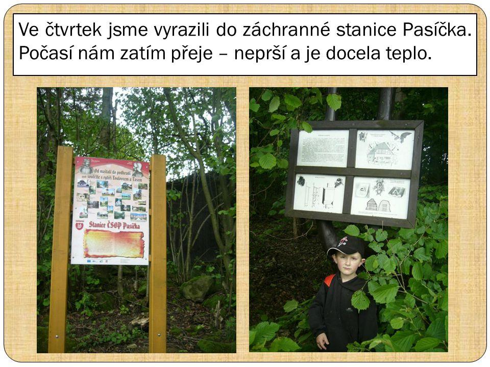 Ve čtvrtek jsme vyrazili do záchranné stanice Pasíčka