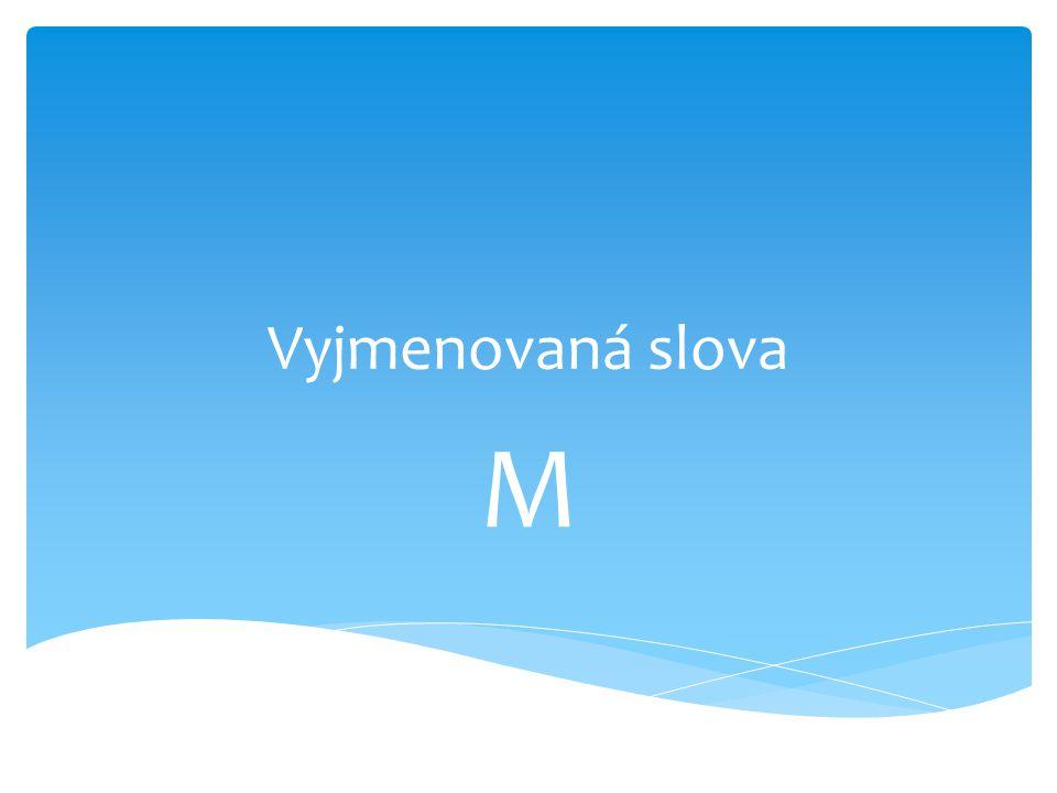 Vyjmenovaná slova M