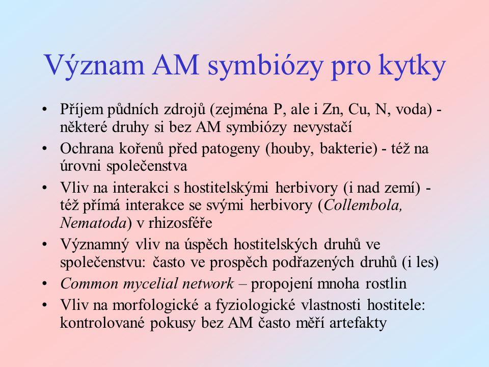 Význam AM symbiózy pro kytky