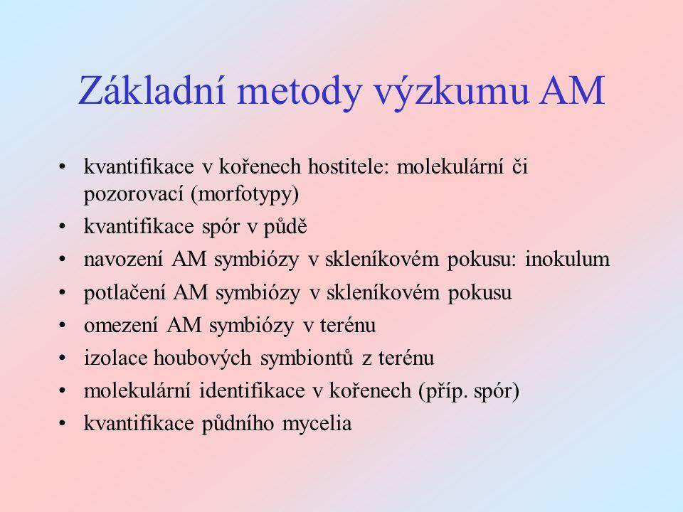 Základní metody výzkumu AM