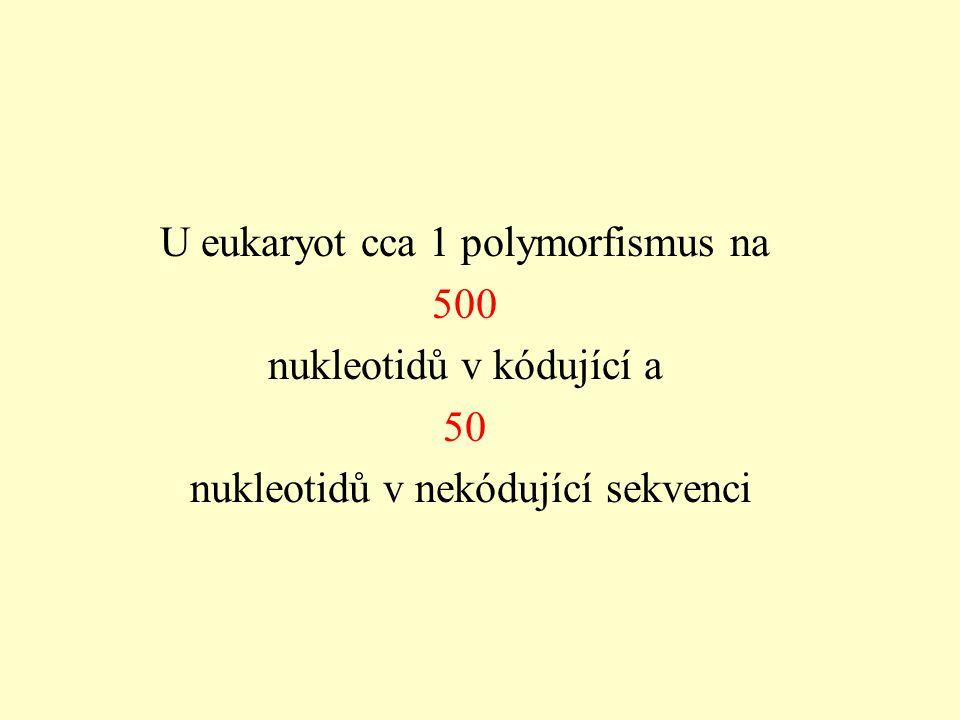 U eukaryot cca 1 polymorfismus na 500 nukleotidů v kódující a 50
