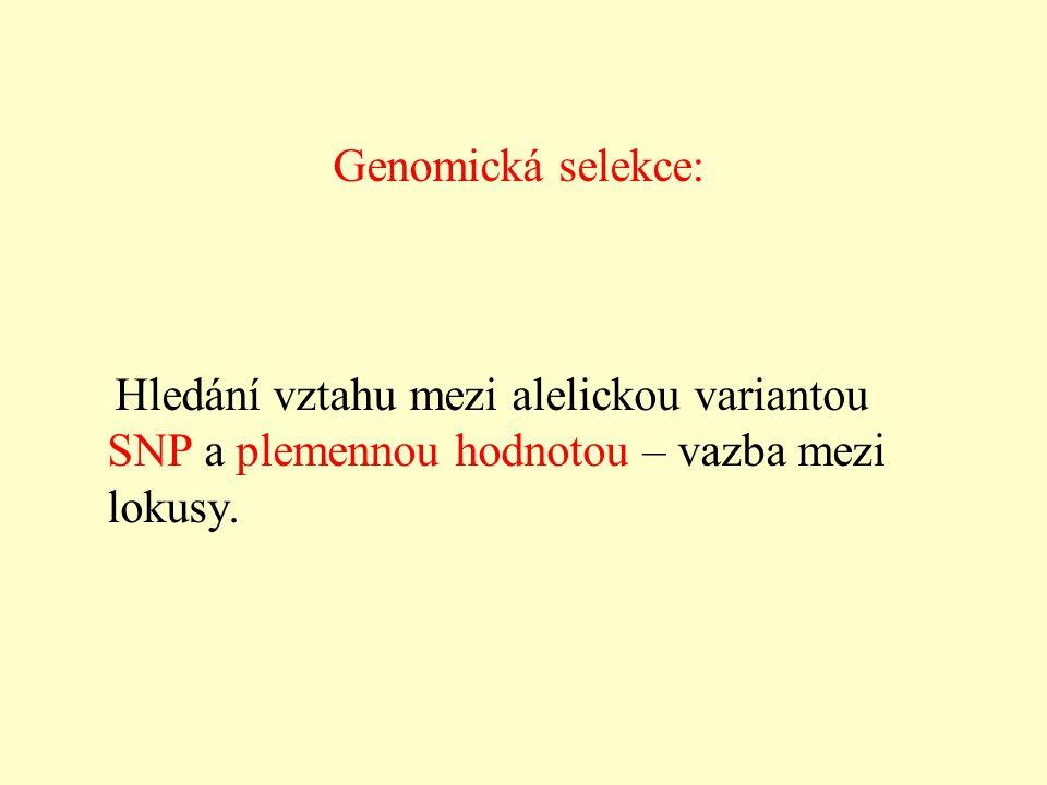 Genomická selekce: Hledání vztahu mezi alelickou variantou SNP a plemennou hodnotou – vazba mezi lokusy.
