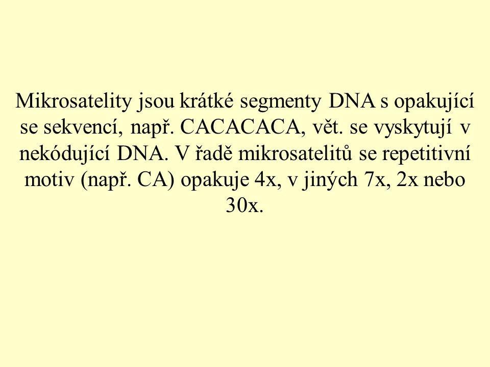Mikrosatelity jsou krátké segmenty DNA s opakující se sekvencí, např