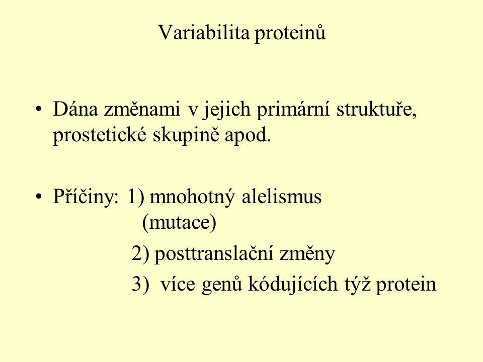 Variabilita proteinů Dána změnami v jejich primární struktuře, prostetické skupině apod. Příčiny: 1) mnohotný alelismus (mutace)
