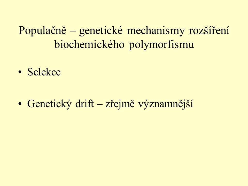 Populačně – genetické mechanismy rozšíření biochemického polymorfismu