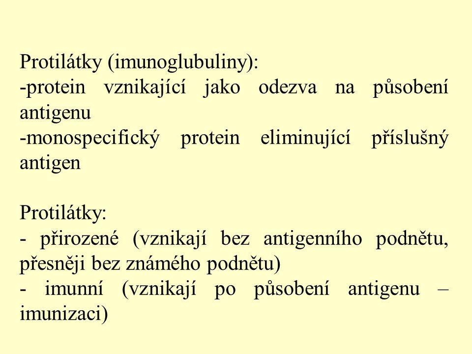 Protilátky (imunoglubuliny):