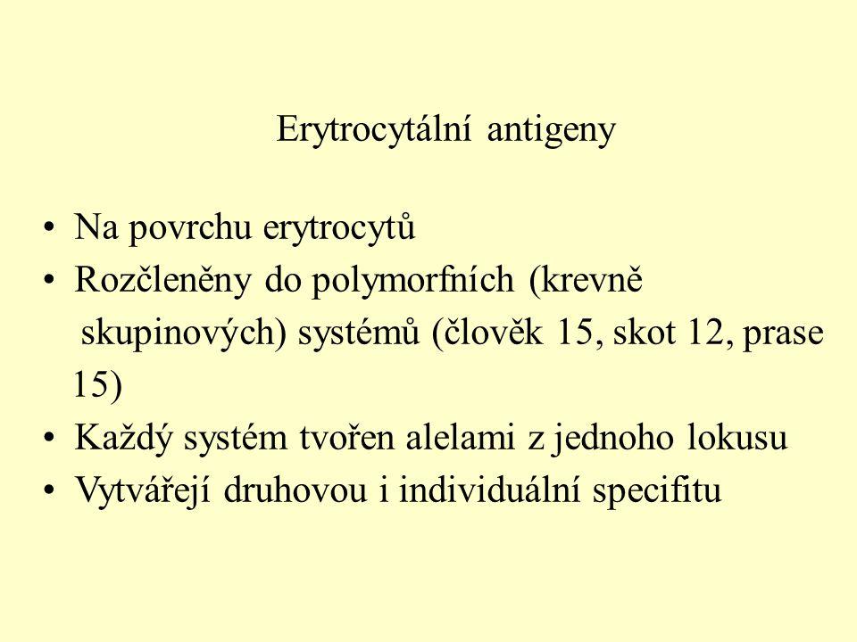 Erytrocytální antigeny