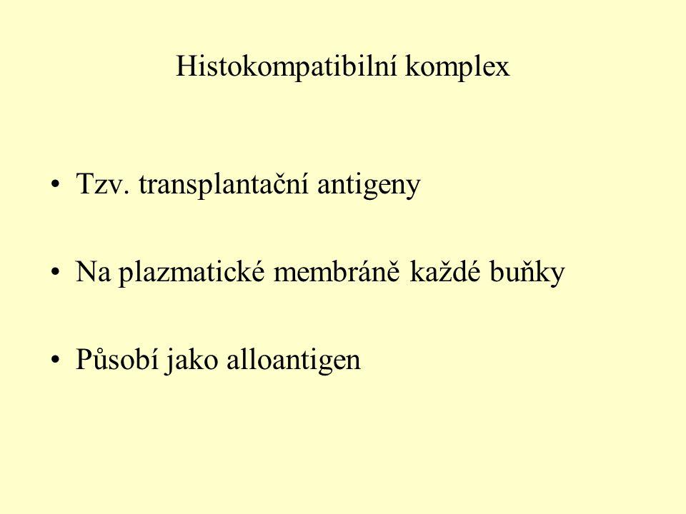 Histokompatibilní komplex