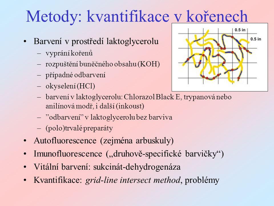 Metody: kvantifikace v kořenech
