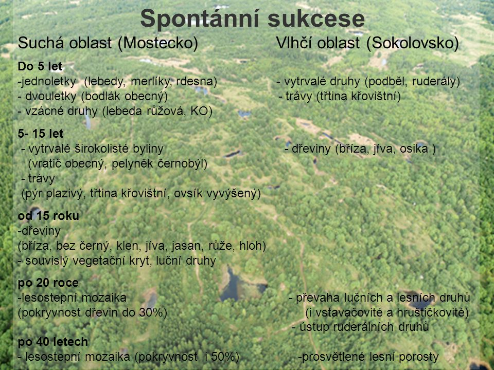 Spontánní sukcese Suchá oblast (Mostecko) Vlhčí oblast (Sokolovsko)