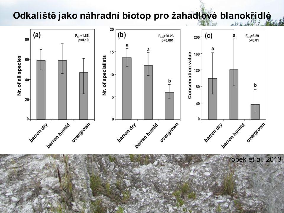 Odkaliště jako náhradní biotop pro žahadlové blanokřídlé