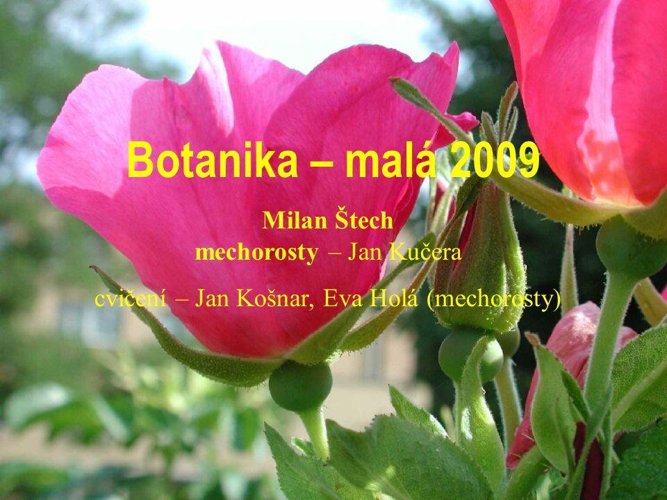 Botanika – malá 2009 Milan Štech mechorosty – Jan Kučera