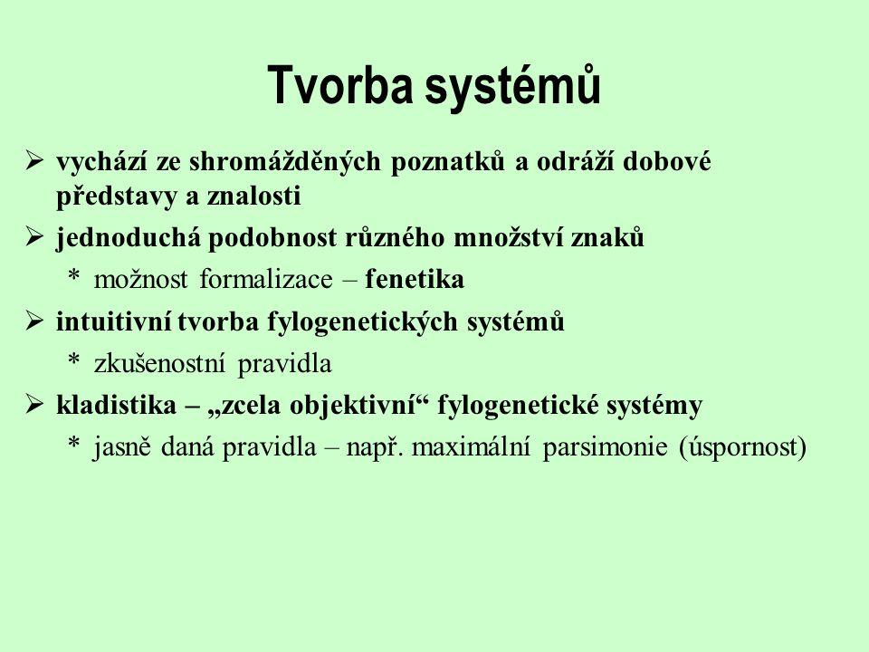 Tvorba systémů vychází ze shromážděných poznatků a odráží dobové představy a znalosti. jednoduchá podobnost různého množství znaků.