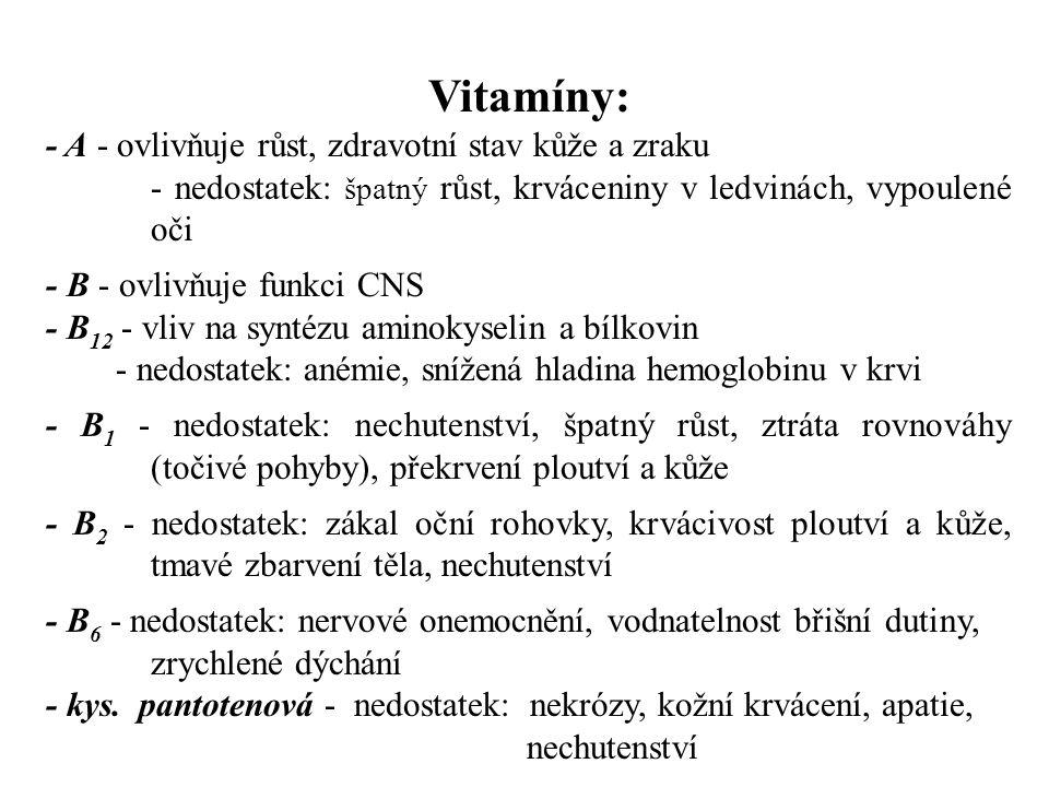Vitamíny: - A - ovlivňuje růst, zdravotní stav kůže a zraku