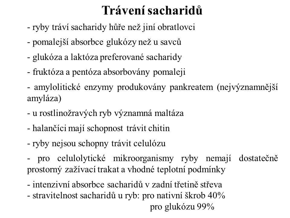 Trávení sacharidů - ryby tráví sacharidy hůře než jiní obratlovci