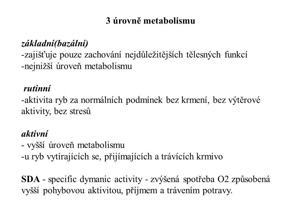 3 úrovně metabolismu základní(bazální) zajišťuje pouze zachování nejdůležitějších tělesných funkcí.