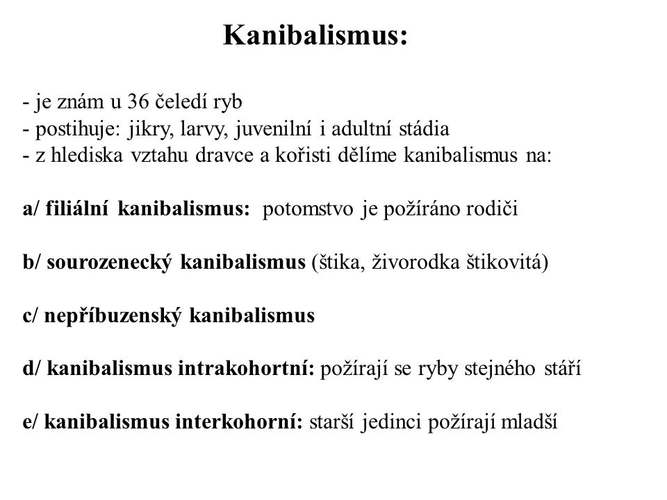 Kanibalismus: - je znám u 36 čeledí ryb