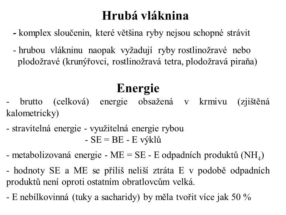 Hrubá vláknina Energie
