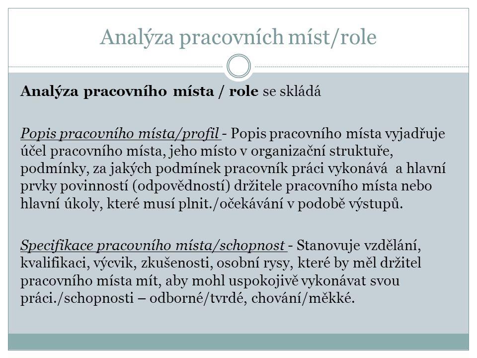 Analýza pracovních míst/role