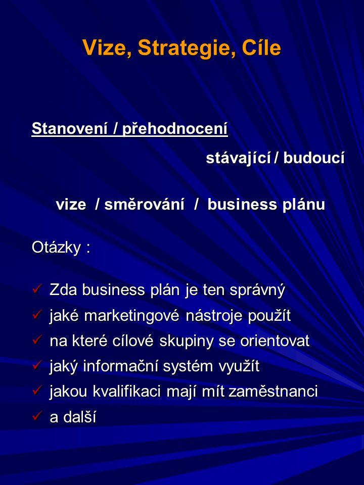 vize / směrování / business plánu