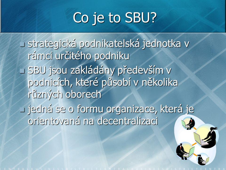 Co je to SBU strategická podnikatelská jednotka v rámci určitého podniku.
