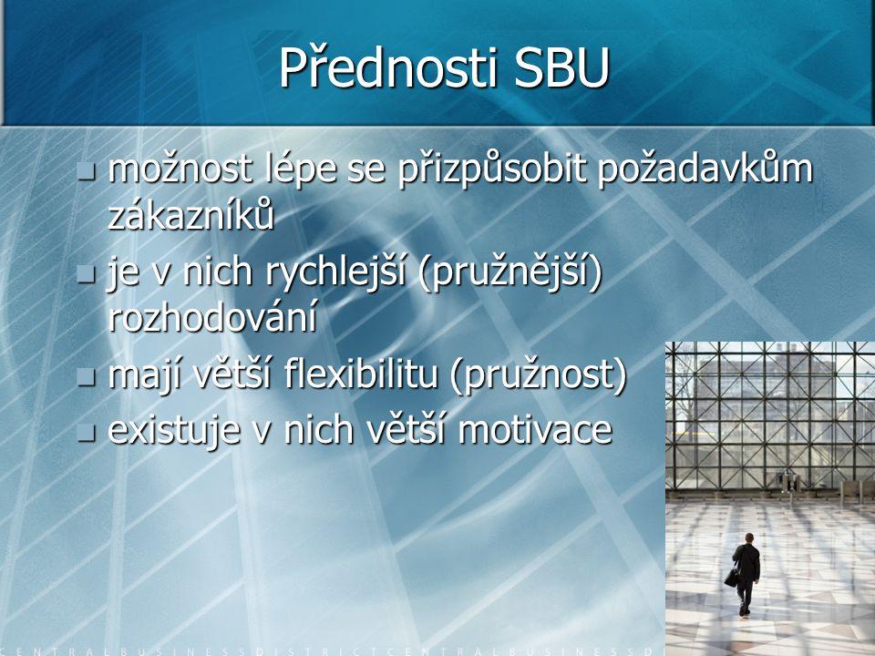 Přednosti SBU možnost lépe se přizpůsobit požadavkům zákazníků