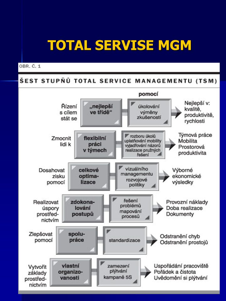 TOTAL SERVISE MGM